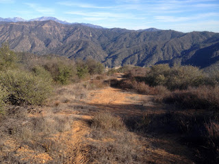 View east down the ascending/descending ridge from the junction of old 2N28, my route down, Angeles National Forest