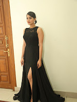 Regina Cassandra looking Elegant at Shourya audio-cover-photo