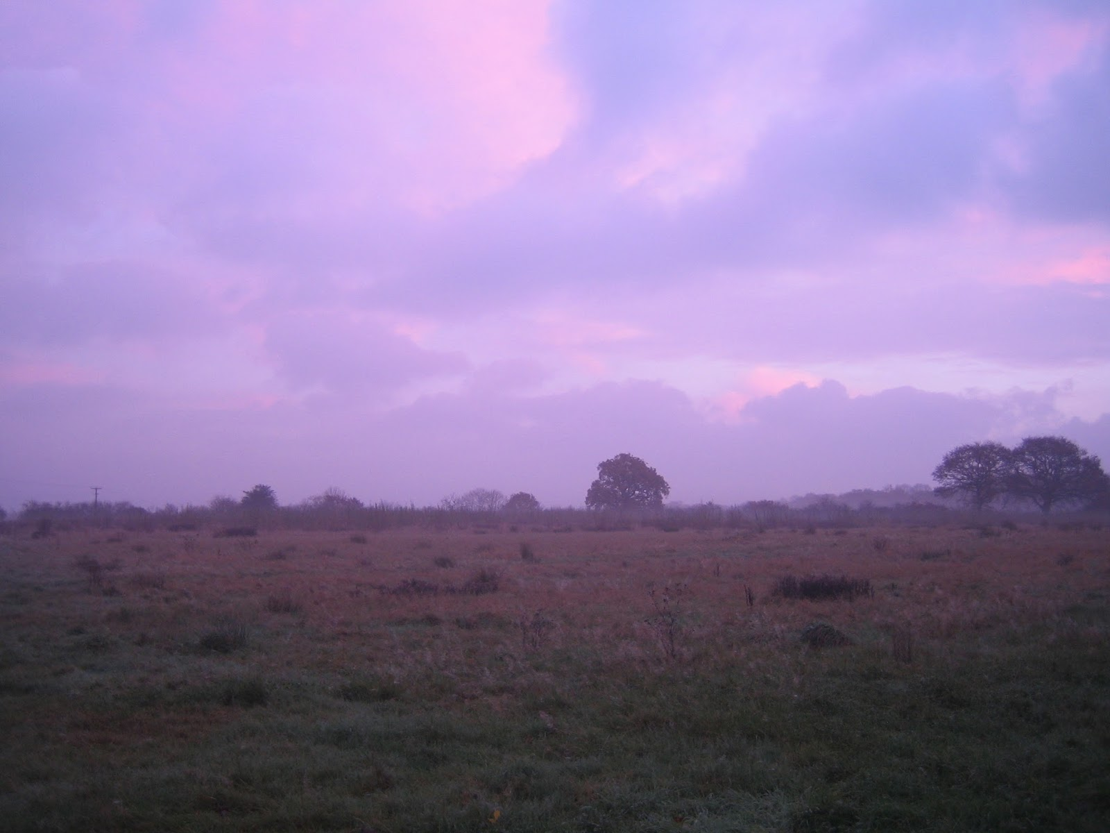 Friars Oak Fields at dawn 1