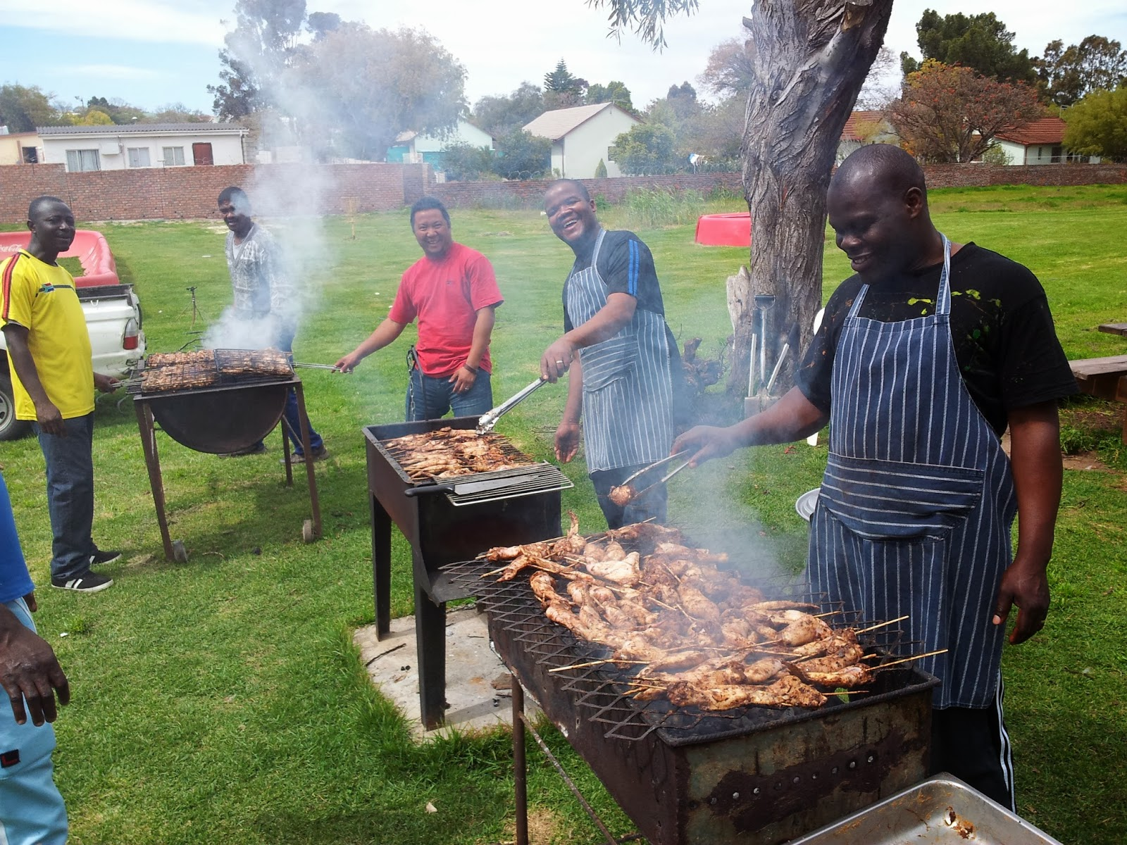 Image result for braai south africa