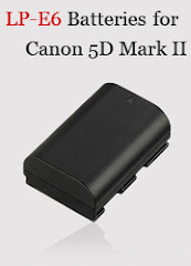 LP-E6 Battery for Canon Cameras