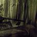 O que há em Darkwood?