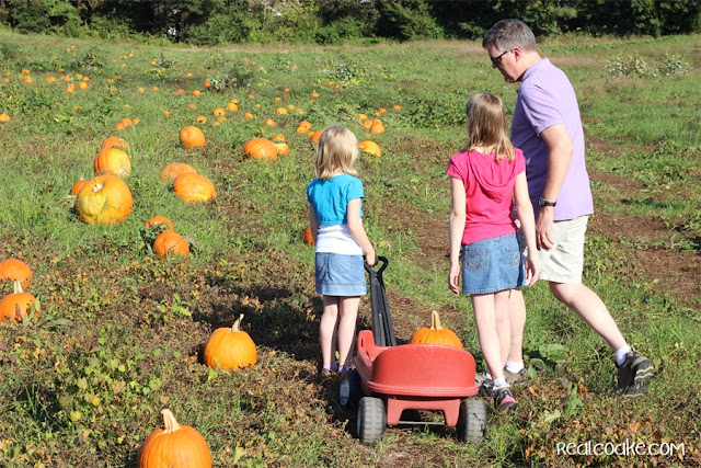 Family Fun idea of going to a pumpkin patch from realcoake.com