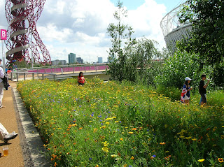 London 2012 Olympics - Olympic Park Landscape