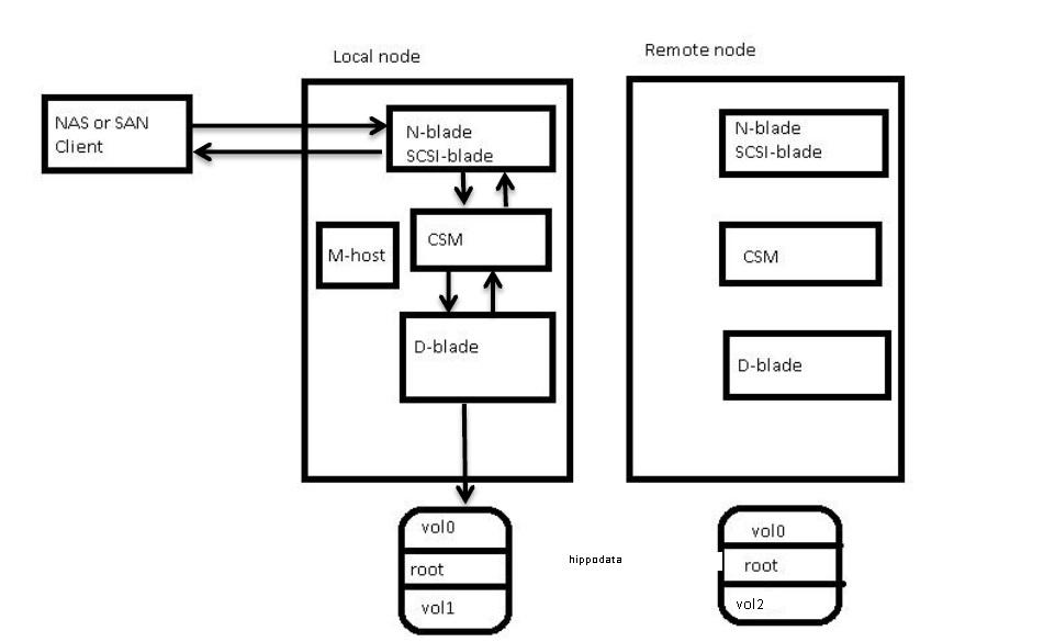 hippodata  dataflow in netapp cluster