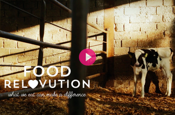 Food ReLovution - Trailer ITA