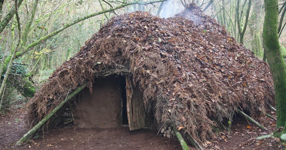 Wilderness Survival Skills And Bushcraft Antics Building