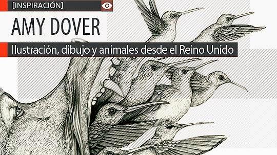 Ilustración, dibujo y animales de AMY DOVER