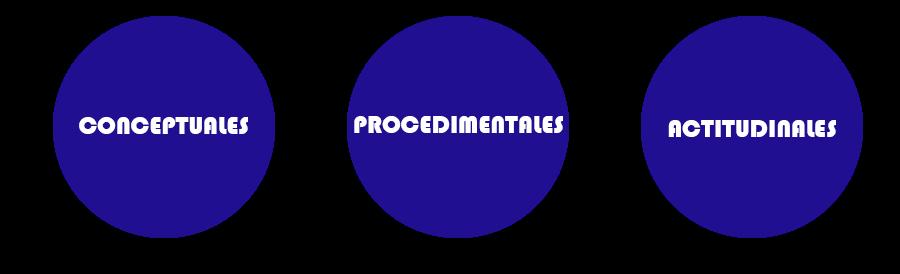 clasificacion_contenidos