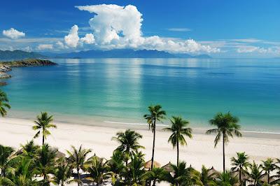 Playa linda con palmeras, aguas cristalinas y arena blanca