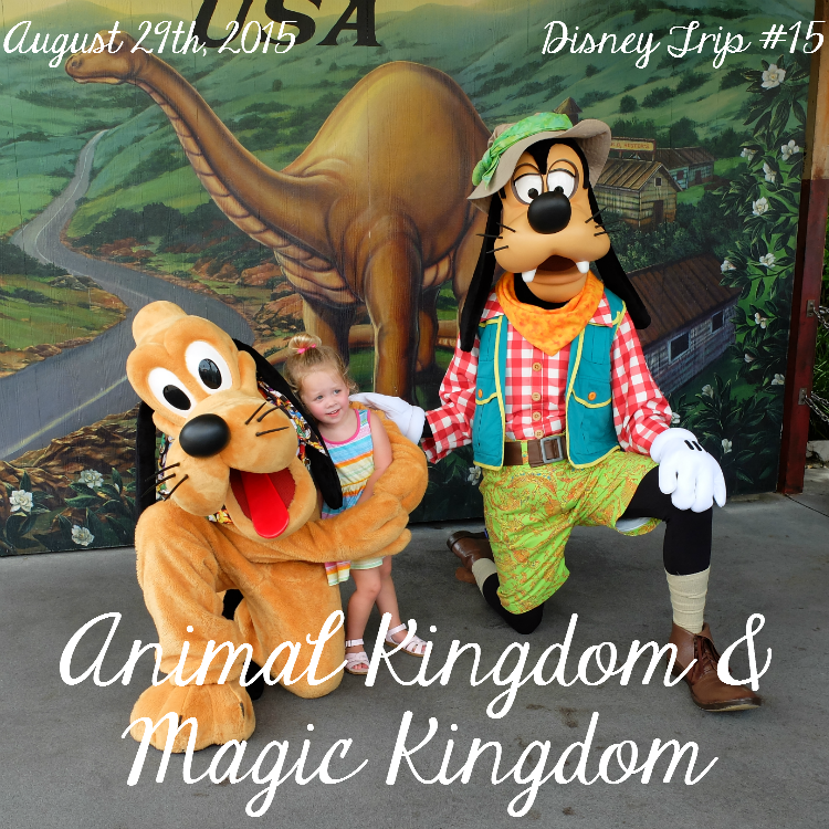 Sweet Turtle Soup: Disney Trip #15 - Animal Kingdom & Magic Kingdom
