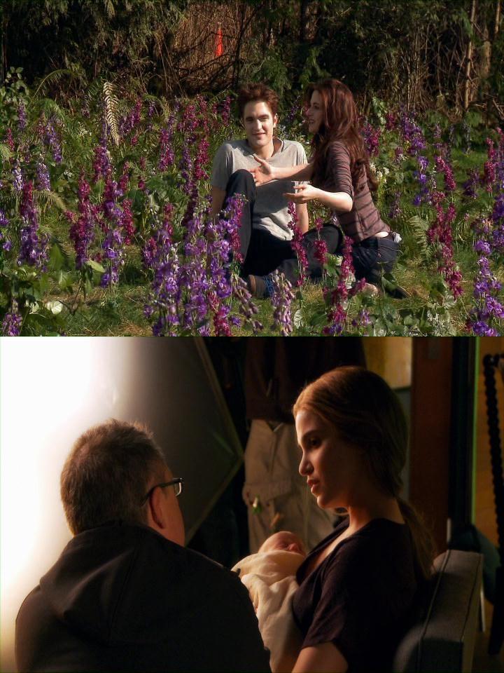 Imágenes desde el BTS de Breaking Dawn Part 1 y 2 Cats