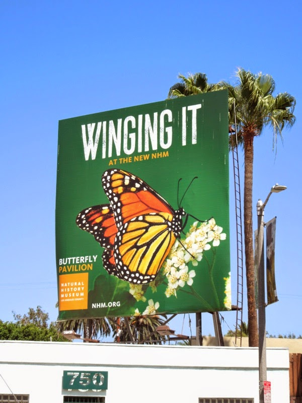 Winging it Butterfly Pavilion NHM billboard