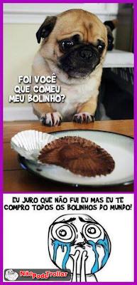 bolinhos own