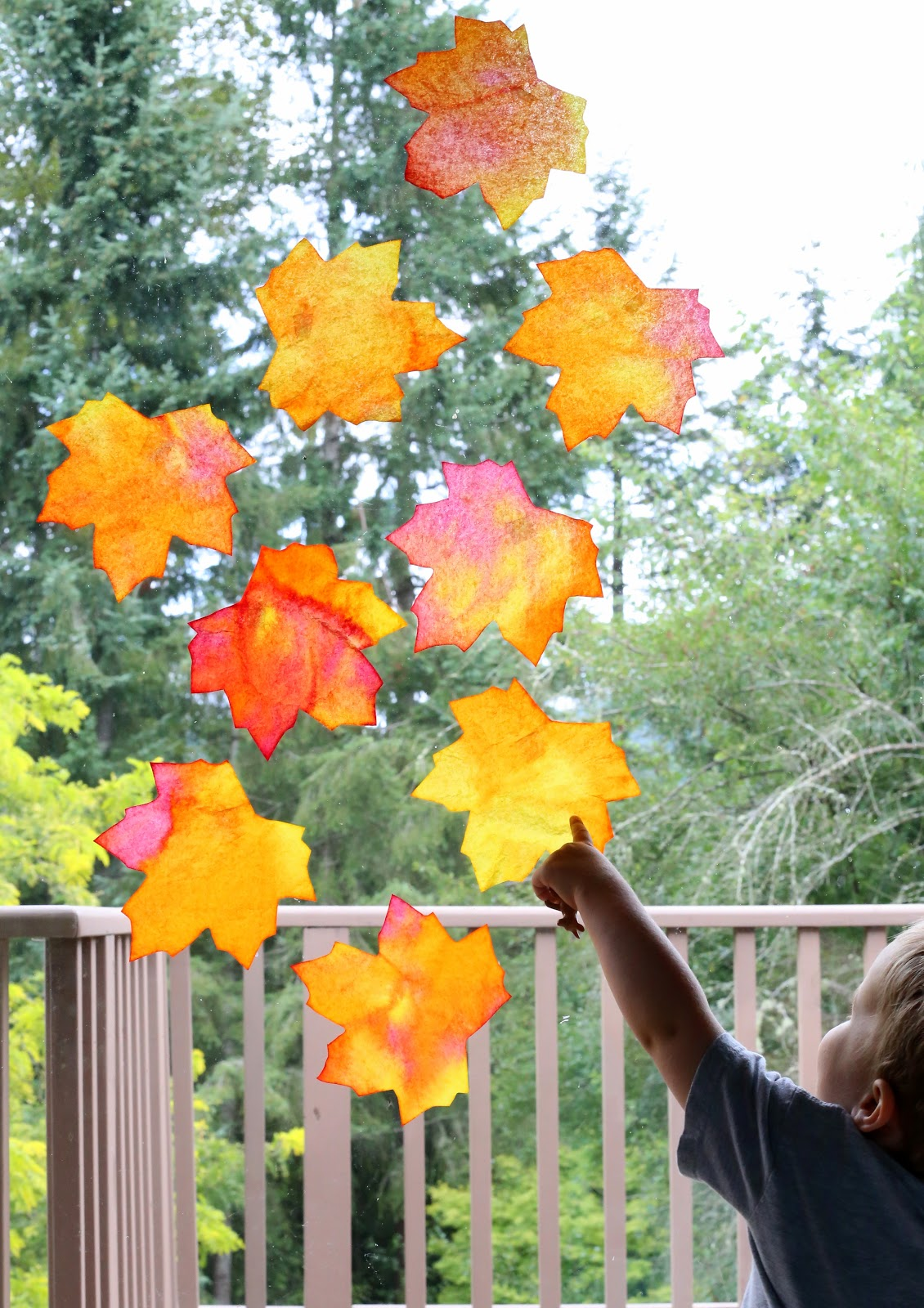 How to make bright and vibrant fall leaf suncatchers with a free leaf template printable from Fun at Home with Kids
