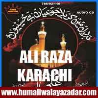 http://ishqehaider.blogspot.com/2013/11/ali-raza-karachi-nohay-2014.html