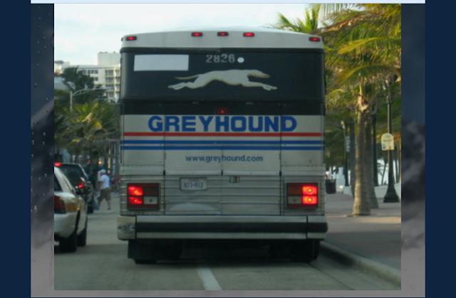 Coach vs Bus