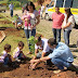 Cidades brasileiras que plantam uma árvore para cada bebê que nasce