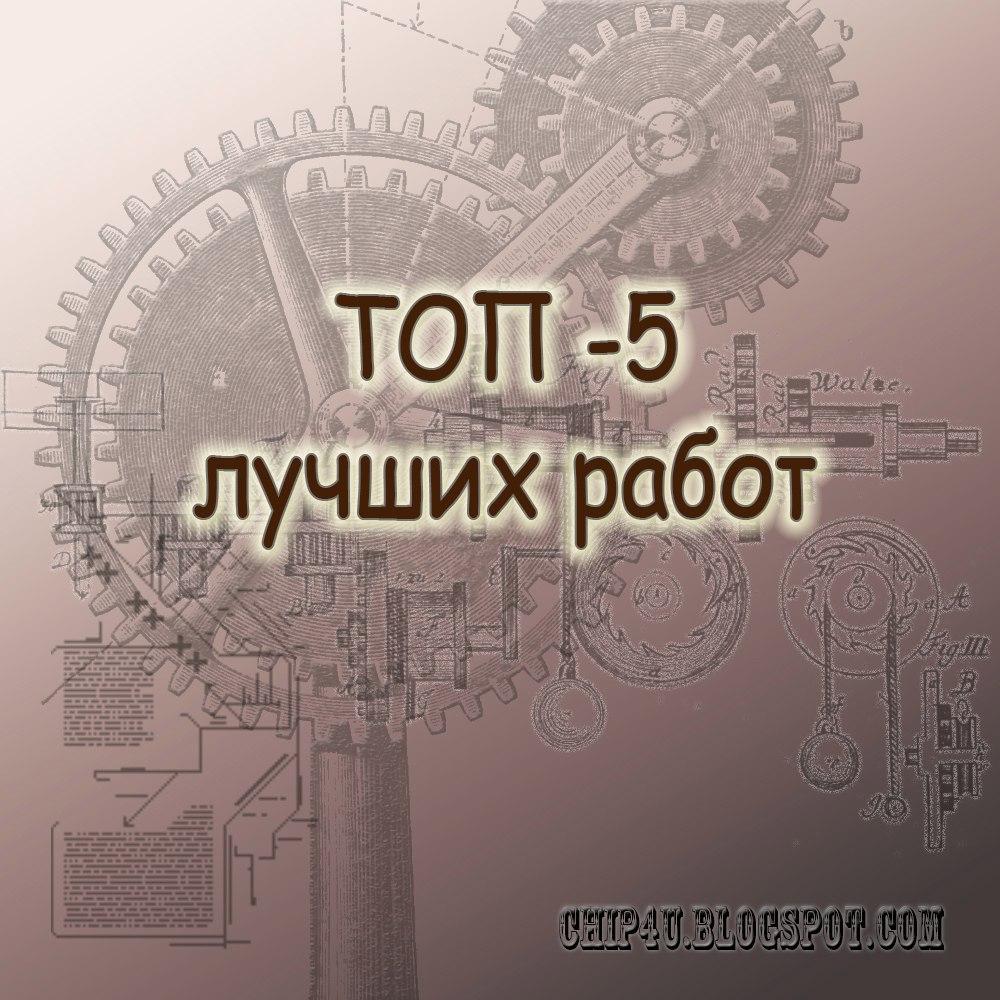 Моя работа в ТОП-5 в блоге Сhip4u
