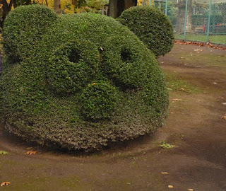 Bush cut into the shape of a pandas head at Hirosaki Botanical Gardens