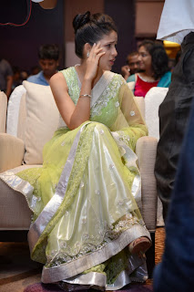 Actress Lavanya Pictures in Saree at Doosukeltha Telugu Movie Music Launch 0034