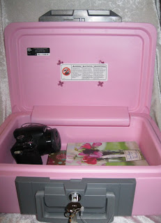 SentrySafe pink safe