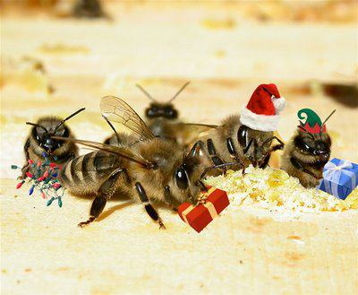 Strathcona Beekeepers: Merry Christmas