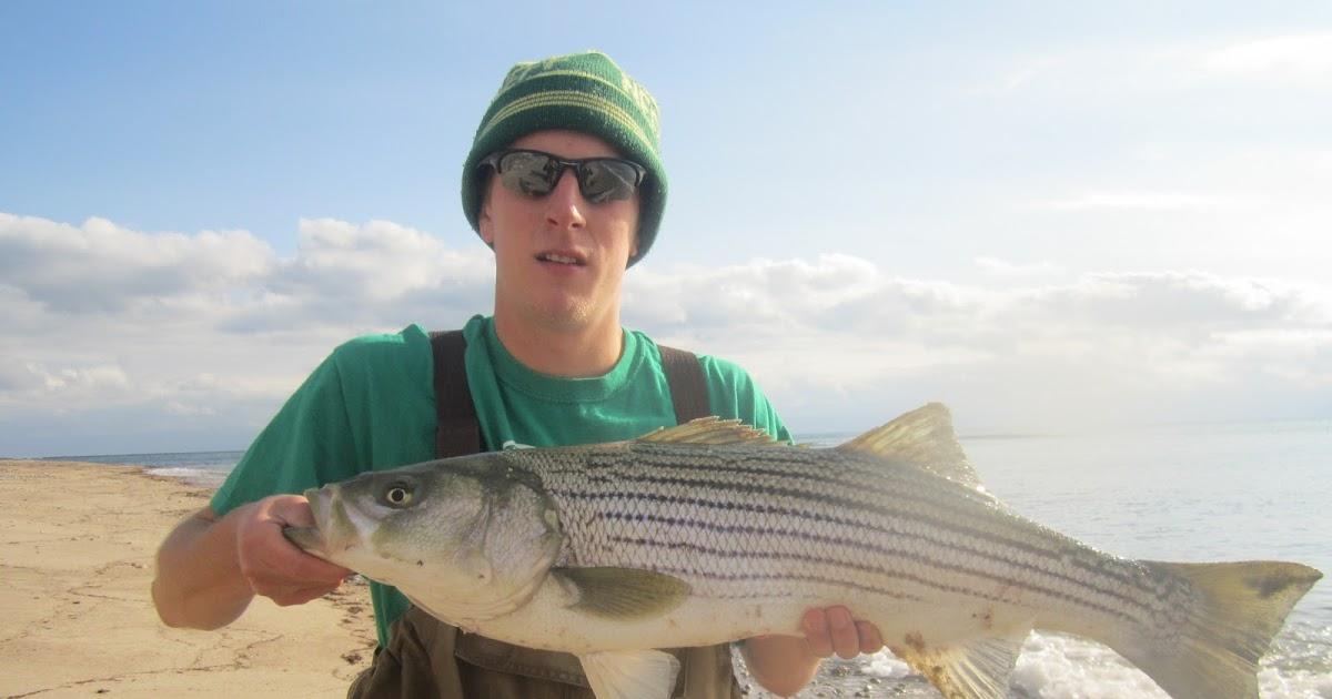 Rhode island striped bass best big fish day in years for Striper fishing ri
