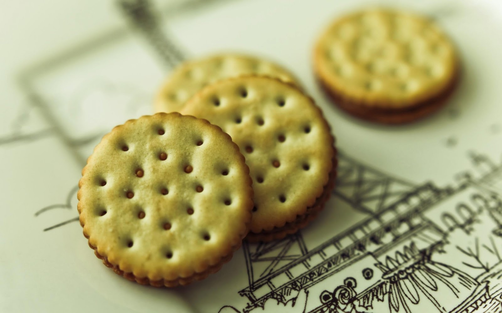 Salty Biscuits