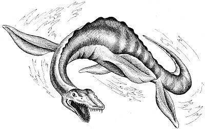 penjelasan cryptid monster laut morgawr - blog misteri cerita tentang dunia