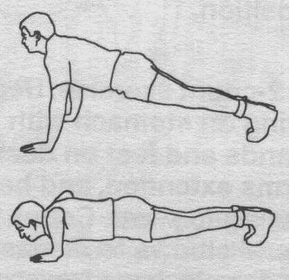 http://warriorfitness.org/tag/push-ups/