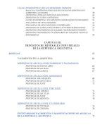 MINERALES INDUSTRIALES DE LA REPUBLICA ARGENTINA. anales indicepagina