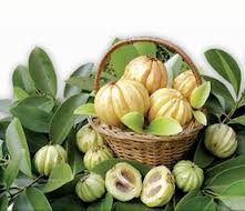 """Garcinia Cambogia The Dual Action Fat Buster"""
