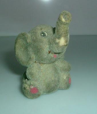 Kopott orrú elefánt