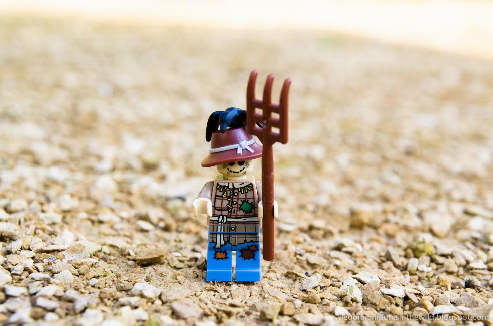 Lego Minifigure Series 11 Scarecrow - Wallpaper