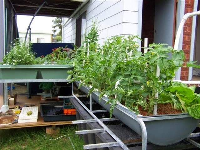 Simple Landscaping Ideas Aquaponics Systems Design