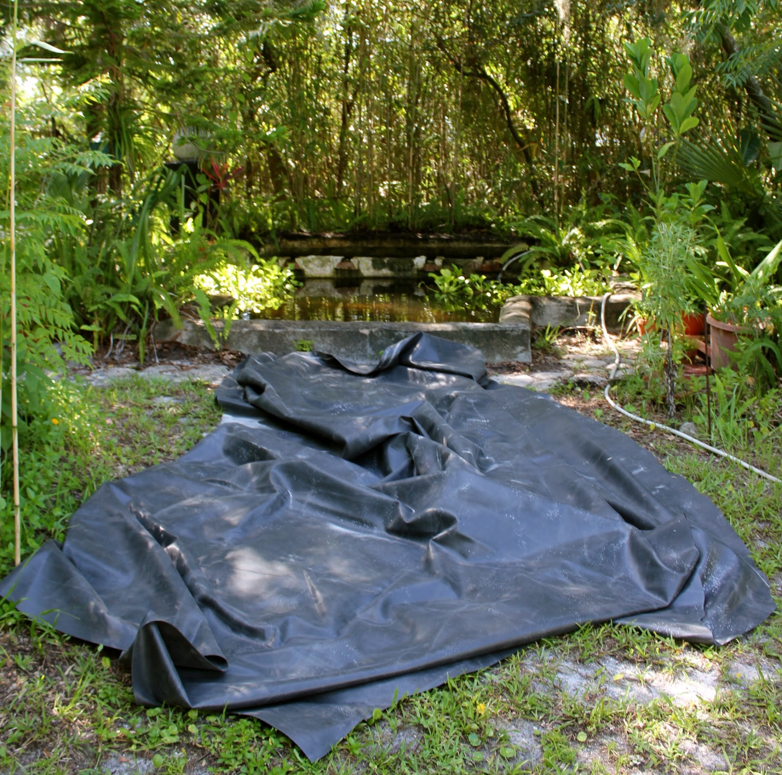 Turtle rescue phillip 39 s natural world 1 0 3 for Rubber pond liner