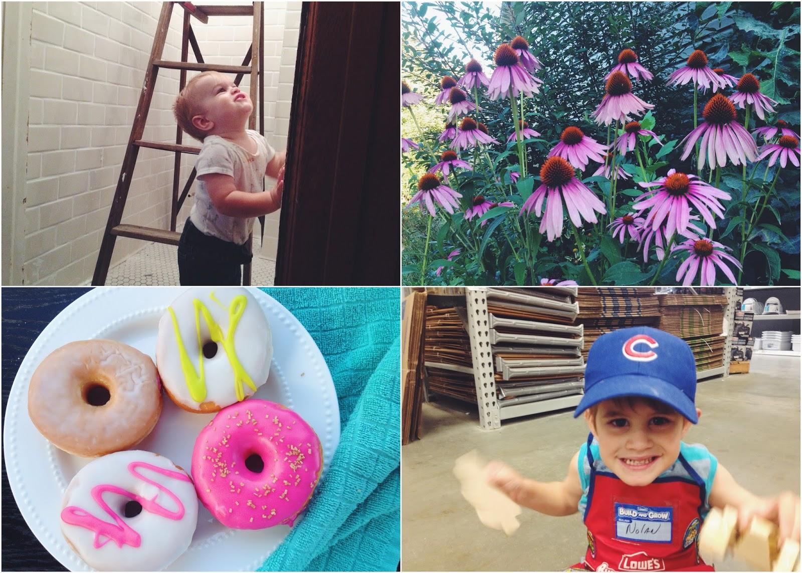 Rachel zimm: friday favorites