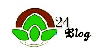 Karafuu24 Blog