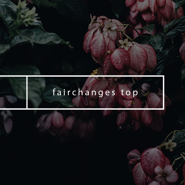 SHOP ONLINE - FAIRCHANGES