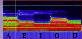 spettrogramma che analizza le vocali pronunciate da voce maschile, risposta in frequenza, formanti, live on stage