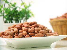 Makanan yang mengandung protein nabati
