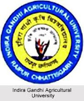Jobs of Data Collection Assistant, Pest Scout in Indira Gandhi Agricultural   University--sarkari all jobs
