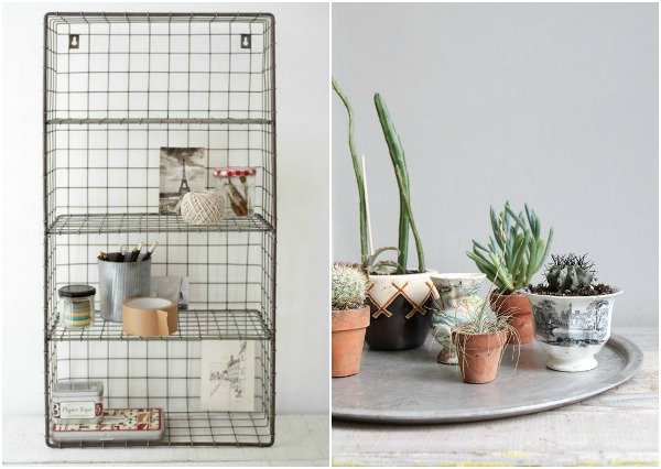 wire shelving and cactus