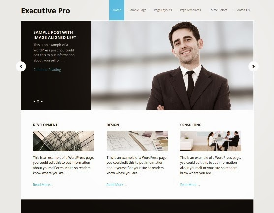 Executive Responsive WordPress Theme