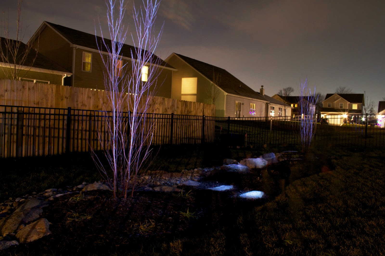 light painting highlight trees and stones