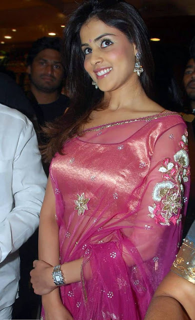 Genelia D'Souza Sexy Transparent saree navel exposed