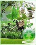 Zöld háztartás