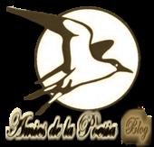 Amics de la Poesia blog informativo cultural de ALCAP