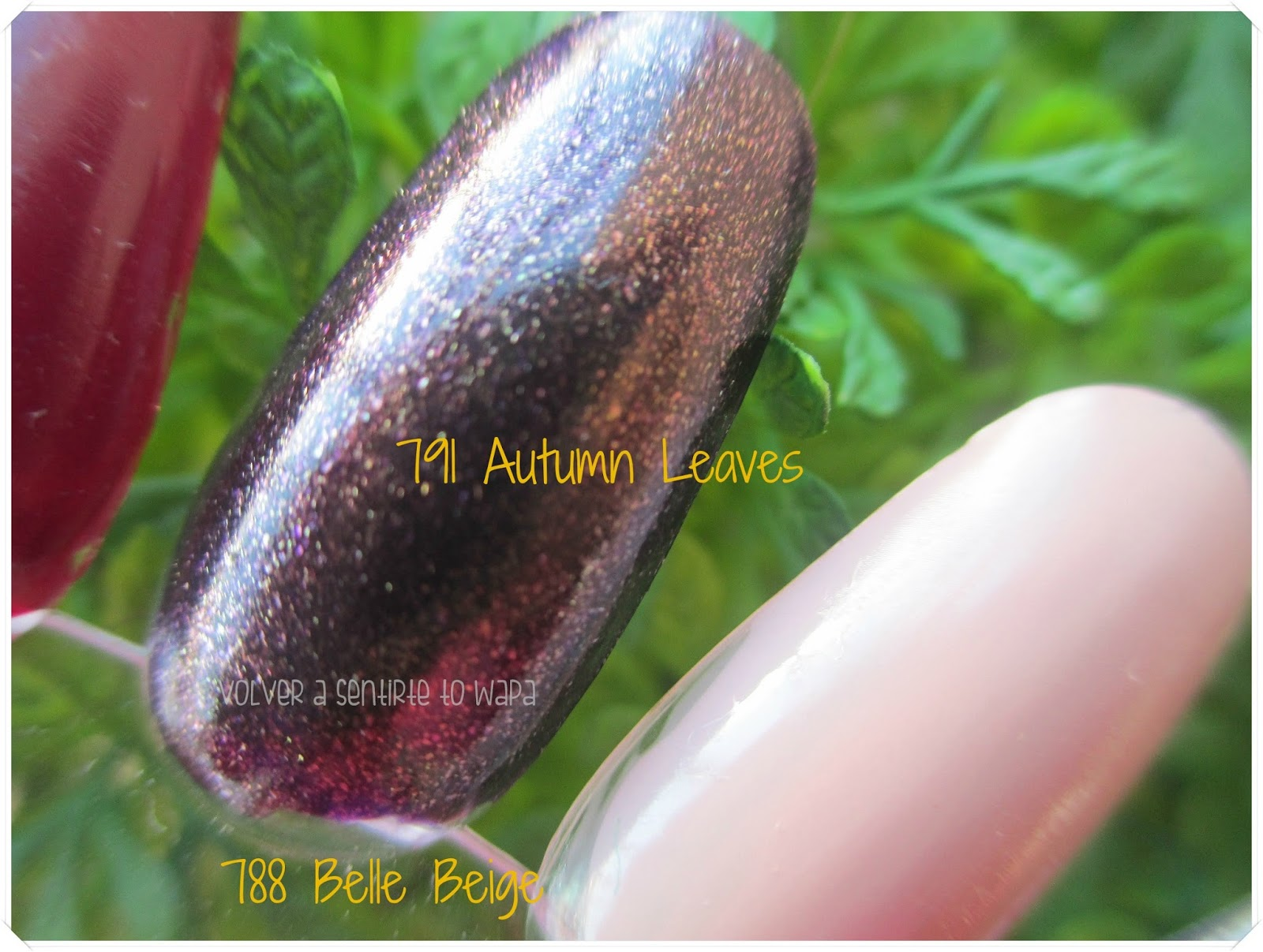 Coffee & Poetry de Isadora - Wonder Nail - 791 Autumn Leaves